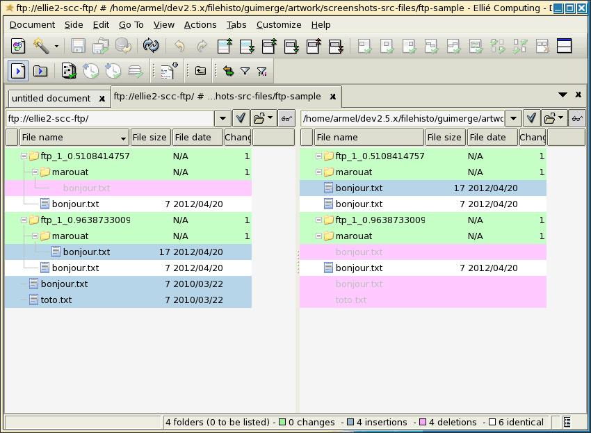 Synchronization of FTP versus local folder with ECMerge under Solaris 10 x86
